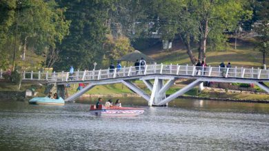Photo of WATCH VIDEO- Ward's lake in Shillong attracts crowds