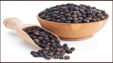 Photo of Black pepper saves from breast and stomach cancer- American Experts