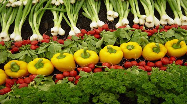 Sikkim Produces 80,000 mt Organic Vegetables in 2016-17