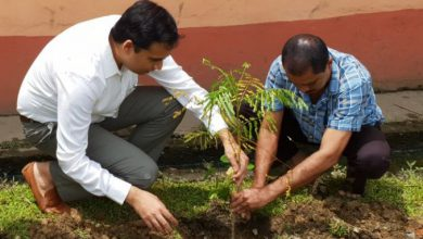 Photo of Assam: Hailakandi observes World Environment Day in befitting manner