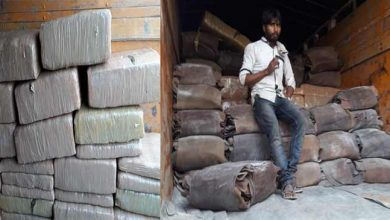 Photo of Assam:  BSF Seizes Cannabis worth of Rs 27.22 lakhs