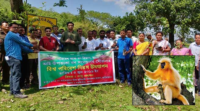 Assam: Bongaigaon Admin in crusade to save golden langurs