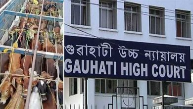 Photo of AssamCattle Syndicate: PIL filed at GHC seeking CBI enquiry
