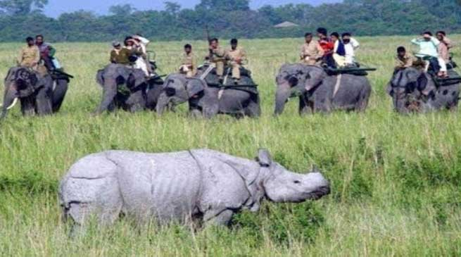 Coronavirus: National parks, tiger reserves and sanctuaries remain close in Assam