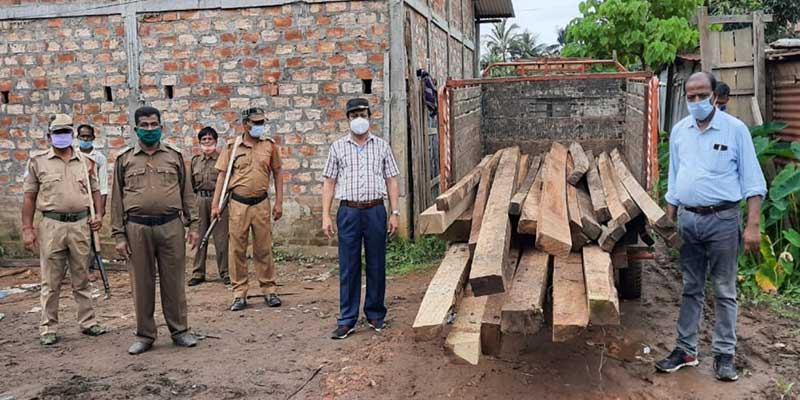 Assam: Massive crackdown on timber smugglers in Hailakandi, sizeable swan timbers seized