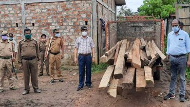 Photo of Assam:Massive crackdown on timber smugglers in Hailakandi, sizeable swan timbers seized